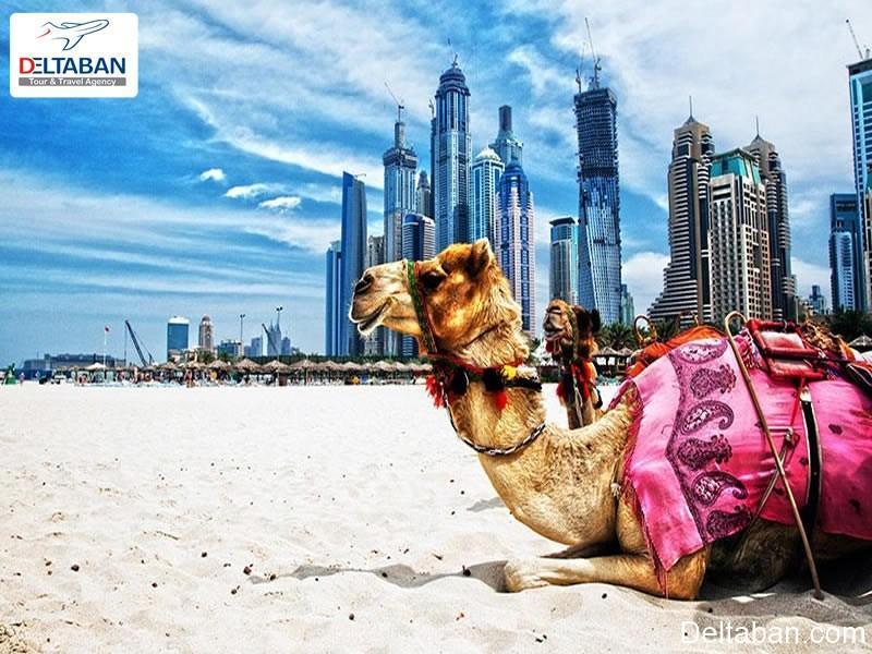 چه تفریحاتی در دبی رایگان هستند؟