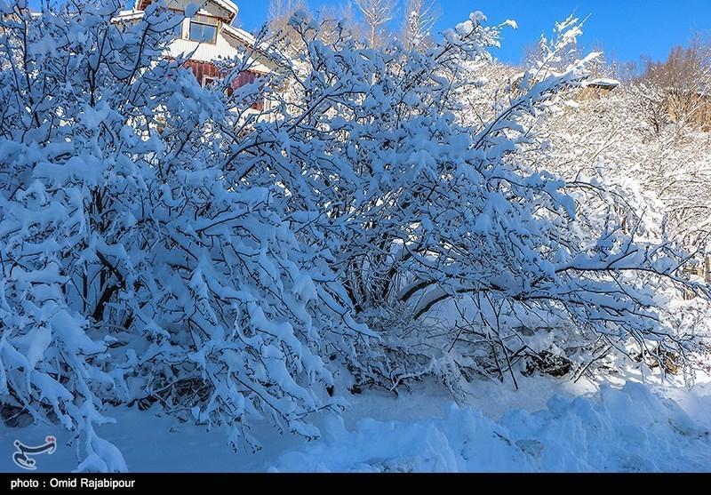 سازمان هواشناسی: شرق کشور 7 درجه سرد می شود