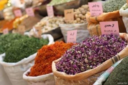 اولین همایش ملی گیاهان دارویی در کاشمر برگزار می گردد