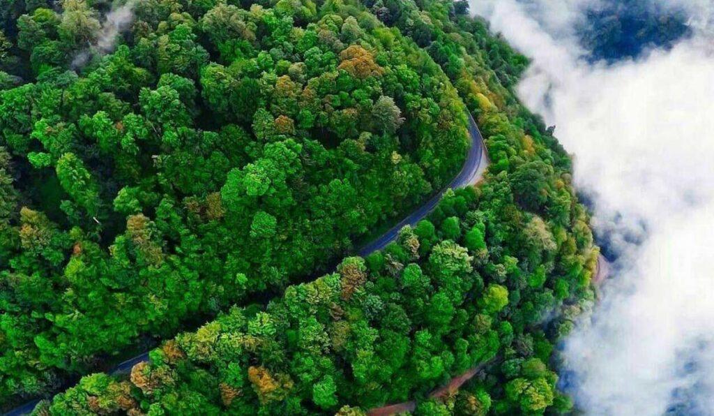 اسالم به خلخال، شگفت انگیزترین جاده جنگلی ایران