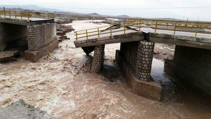 خبرنگاران بارندگی در فریمان 21 میلیارد ریال خسارت به بارآورد