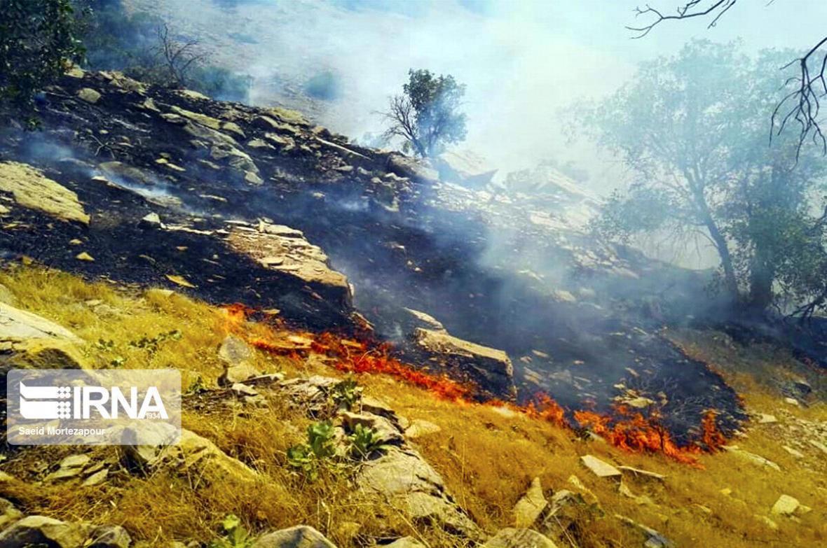 خبرنگاران مدیرکل محیط زیست بوشهر: آتش سوزی های مکرر نشان از تغییرات اقلیمی است
