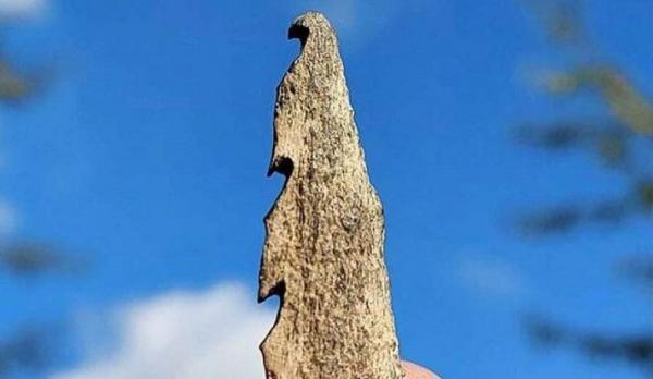 سلاح هایی از جنس استخوان انسان کشف شد