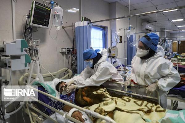 خبرنگاران 112 بیمار کرونایی در قم بستری هستند