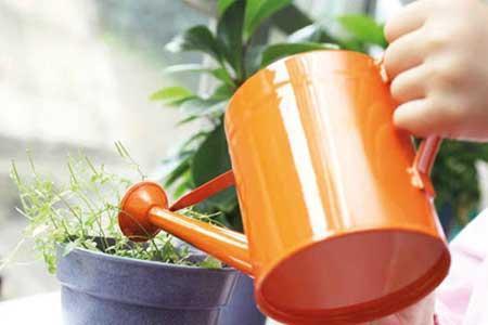 باغبانی شیرین می گردد